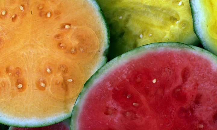 watermelon-varieties-hero-getty.jpg